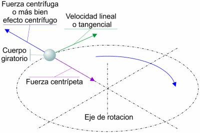 fuerza-centrifuga