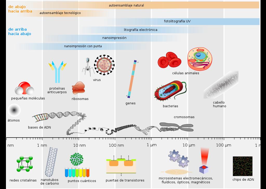 Nanotecnología- Comparación nanométrica