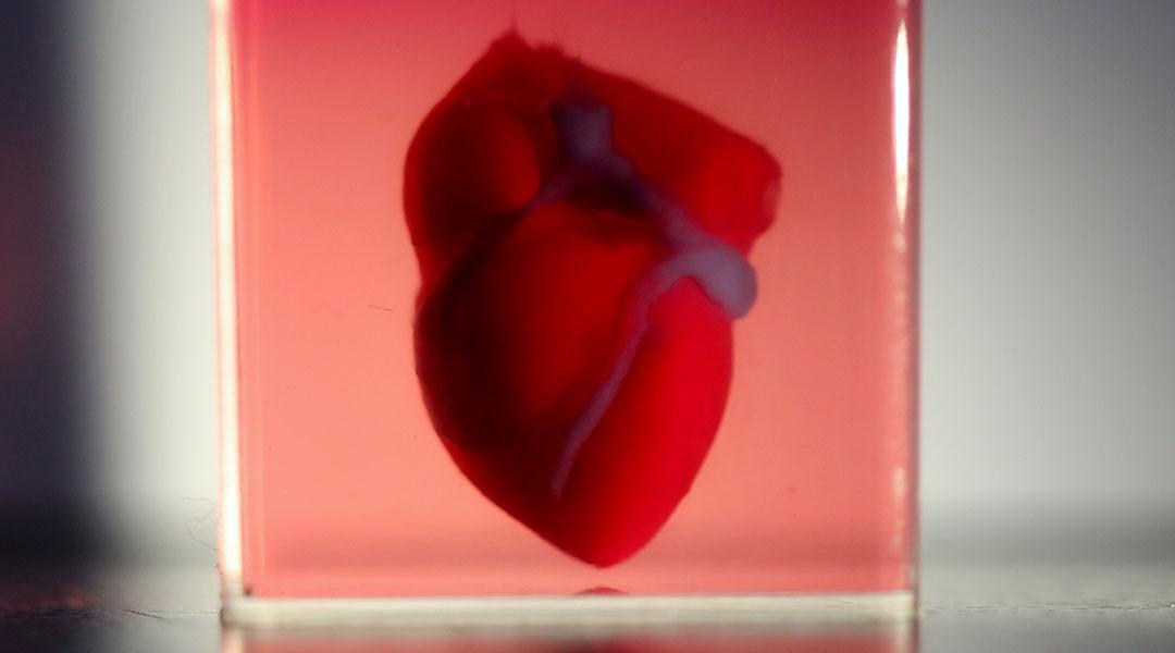 Nanotecnología en ingeniería de tejidos. Corazón hecho por impresoras 3D