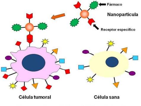Nanomedicina. Esquema de liberación de fármacos