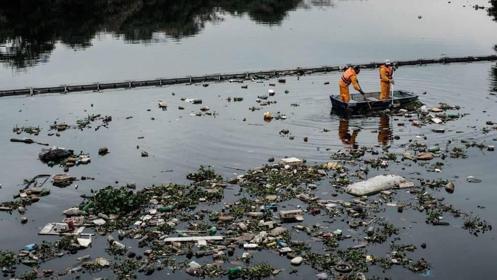 Los tóxicos que tiramos al mar de alguna manera vuelven a nosotros.