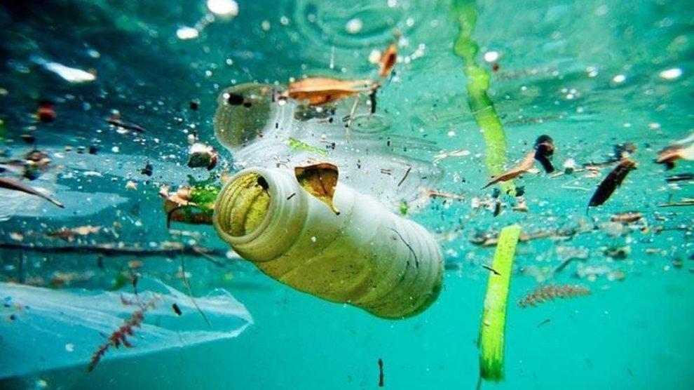 ¿Por qué cuidar los mares?