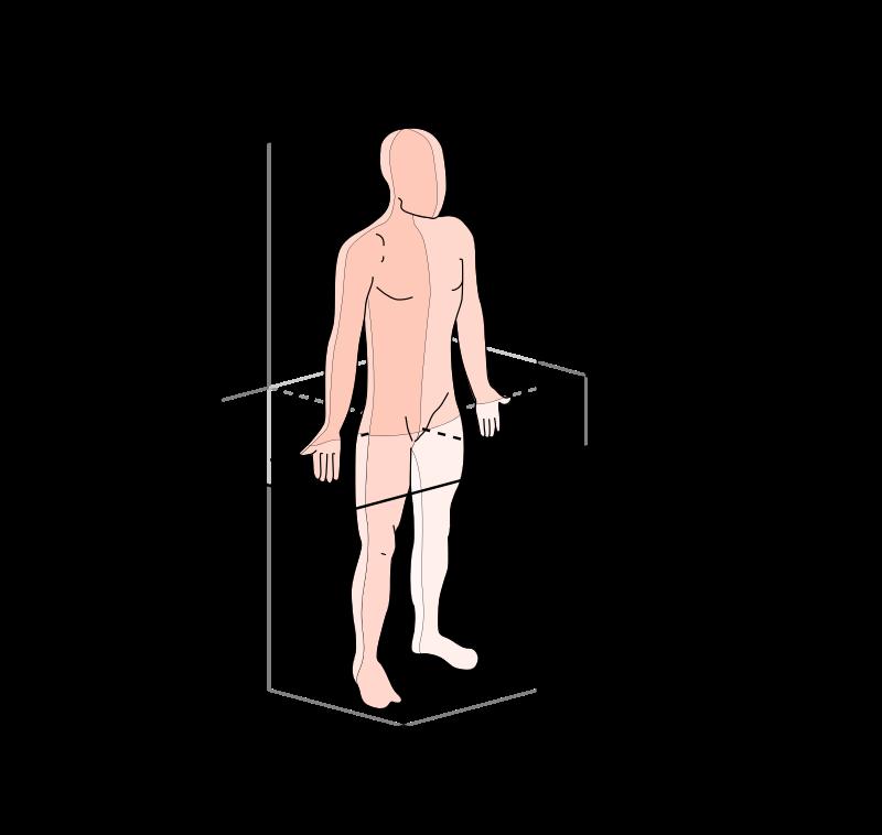 Planos-y-ejes-anatomicos