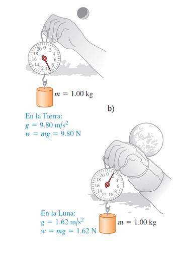 Relacion masa y peso de un objeto