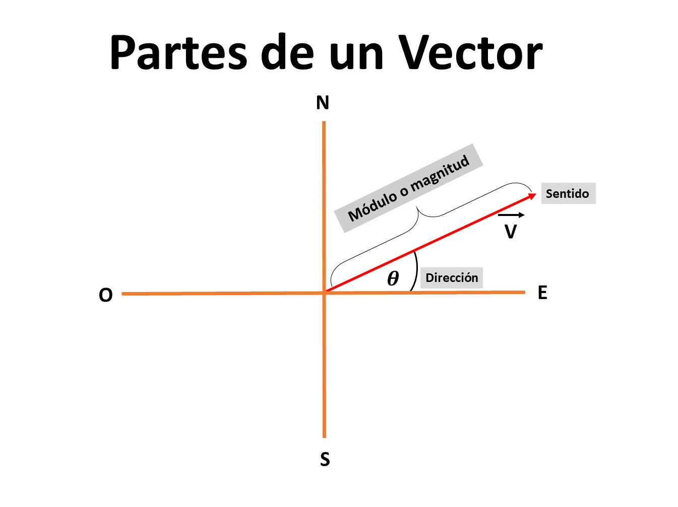 Partes-Vectores